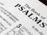 žalmy